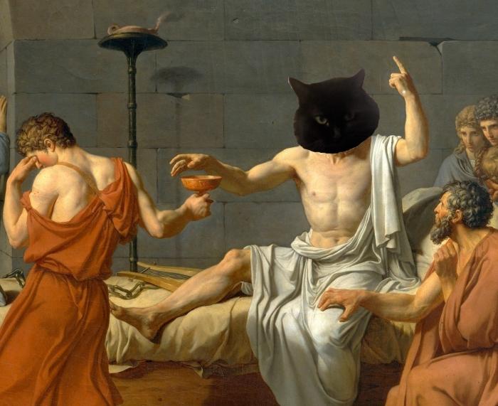 Athena-as-socrates